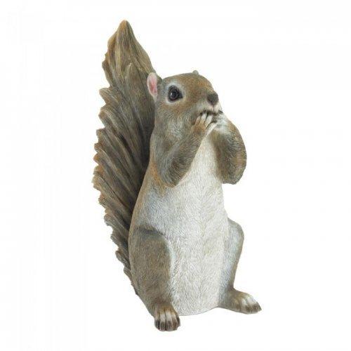 speak no evil squirrel
